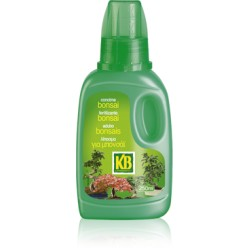 KB CONCIME BONSAI 250 ML.