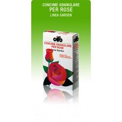 CIFO ROSE 1.0 KG.